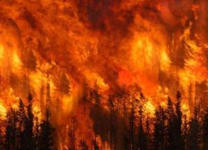 Vasto incendio a Monteodorisio